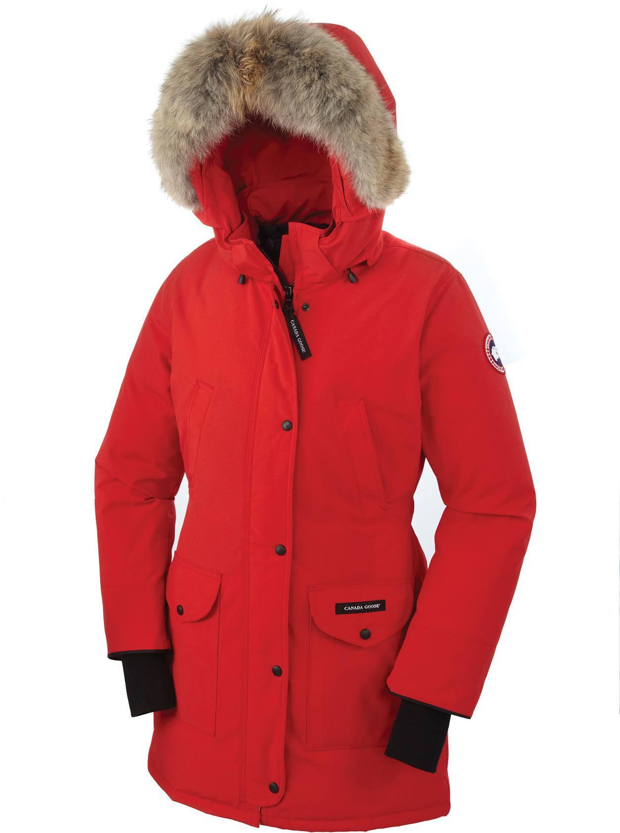 Punainen Canada Goose